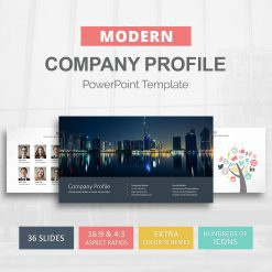 Company profile PPT